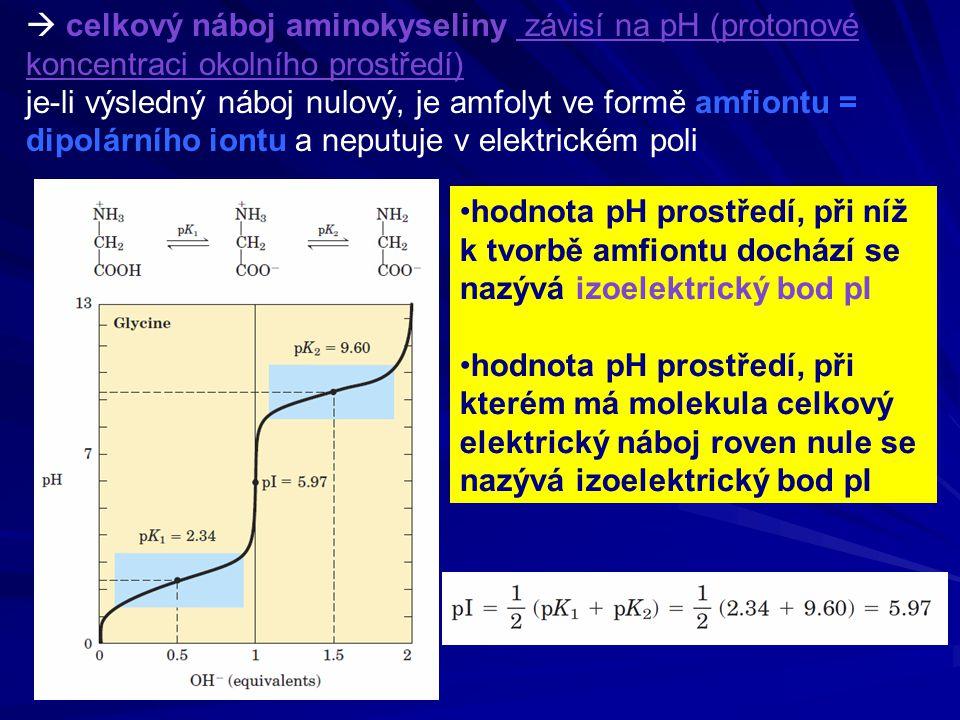  celkový náboj aminokyseliny závisí na pH (protonové koncentraci okolního prostředí) je-li výsledný náboj nulový, je amfolyt ve formě amfiontu = dipo