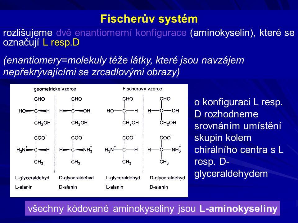 Fischerův systém rozlišujeme dvě enantiomerní konfigurace (aminokyselin), které se označují L resp.D (enantiomery=molekuly téže látky, které jsou navz