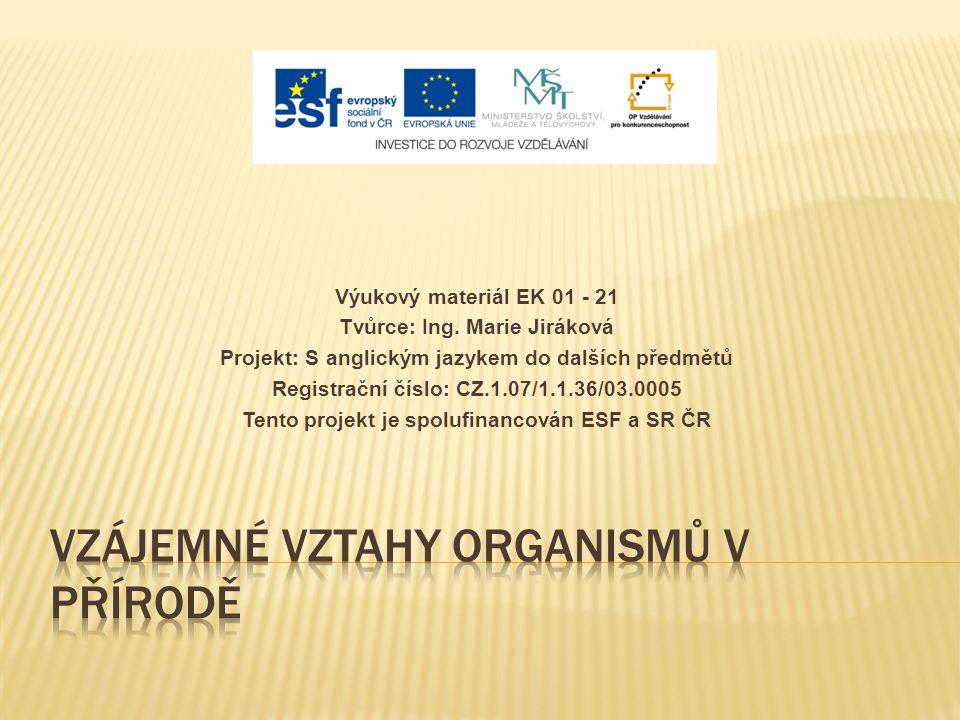 Výukový materiál EK 01 - 21 Tvůrce: Ing. Marie Jiráková Projekt: S anglickým jazykem do dalších předmětů Registrační číslo: CZ.1.07/1.1.36/03.0005 Ten
