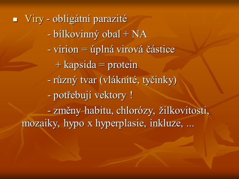 Viry - obligátní parazité Viry - obligátní parazité - bílkovinný obal + NA - bílkovinný obal + NA - virion = úplná virová částice - virion = úplná vir