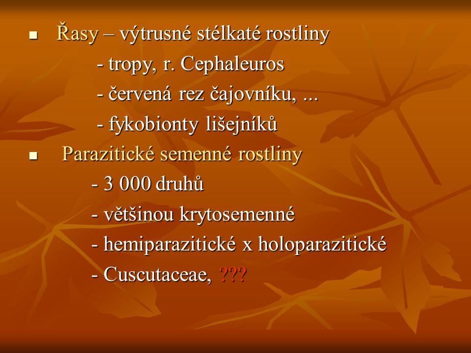 Řasy – výtrusné stélkaté rostliny Řasy – výtrusné stélkaté rostliny - tropy, r. Cephaleuros - tropy, r. Cephaleuros - červená rez čajovníku,... - červ