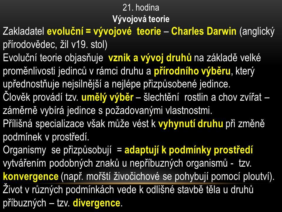 21. hodina Vývojová teorie Zakladatel evoluční = vývojové teorie – Charles Darwin (anglický přírodovědec, žil v19. stol) Evoluční teorie objasňuje vzn