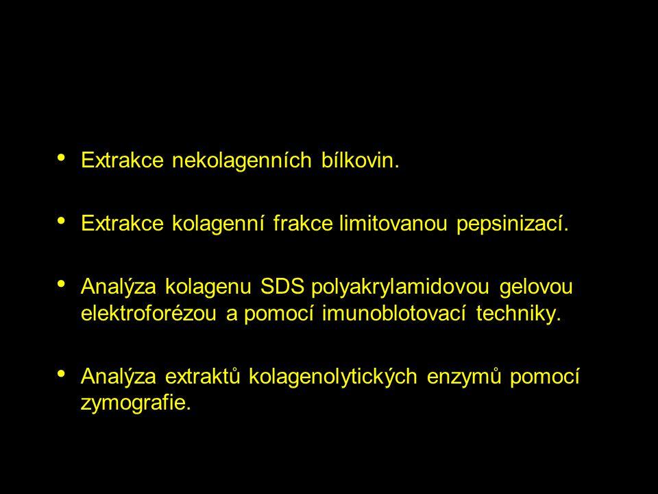 Extrakce nekolagenních bílkovin. Extrakce kolagenní frakce limitovanou pepsinizací. Analýza kolagenu SDS polyakrylamidovou gelovou elektroforézou a po