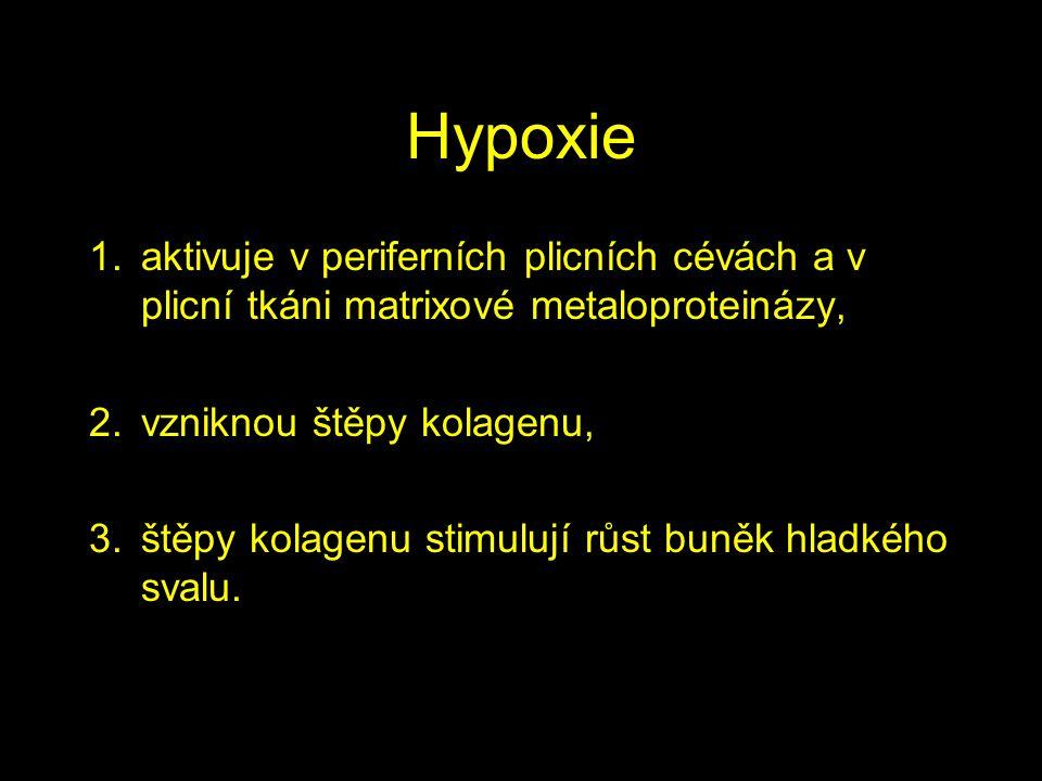 Hypoxie 1.aktivuje v periferních plicních cévách a v plicní tkáni matrixové metaloproteinázy, 2.vzniknou štěpy kolagenu, 3.štěpy kolagenu stimulují rů