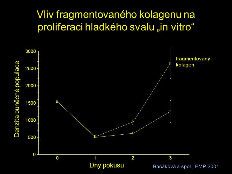 """Vliv fragmentovaného kolagenu na proliferaci hladkého svalu """"in vitro"""" J J J J É É É É 0123 0 500 1000 1500 2000 2500 3000 Dny pokusu fragmentovaný ko"""