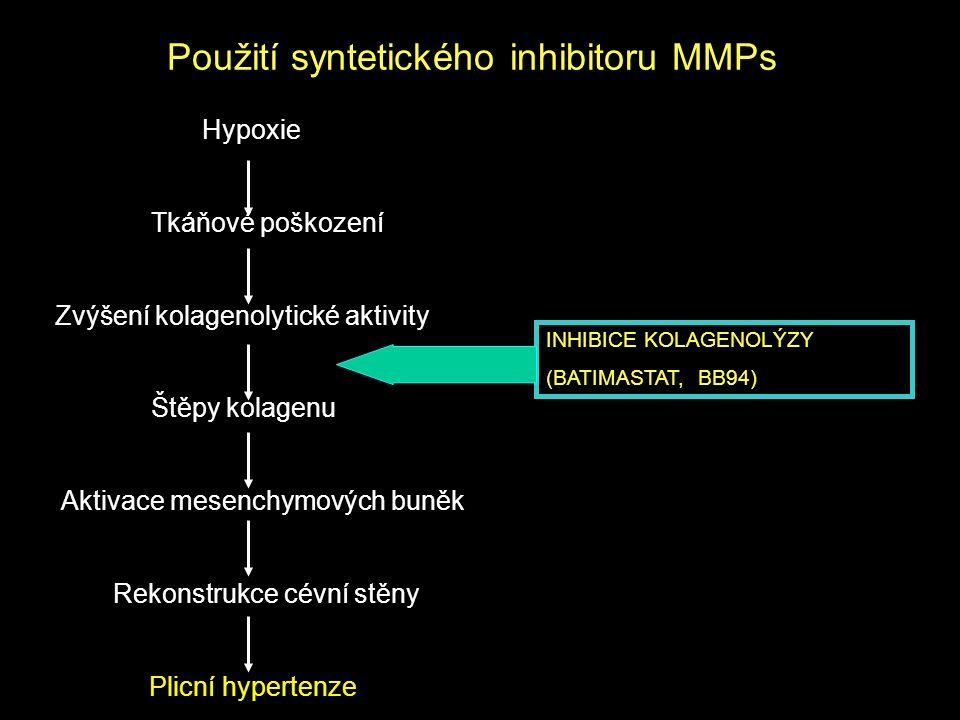 Použití syntetického inhibitoru MMPs Hypoxie Tkáňové poškození Zvýšení kolagenolytické aktivity Štěpy kolagenu Aktivace mesenchymových buněk Rekonstru