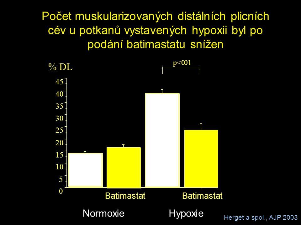 0 5 10 15 20 25 30 35 40 45 % DL Batimastat HypoxieNormoxie p<0.01 Počet muskularizovaných distálních plicních cév u potkanů vystavených hypoxii byl p
