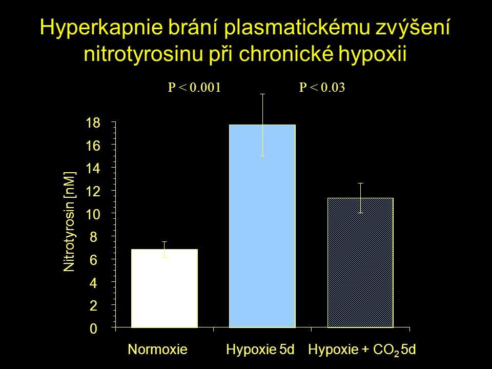NormoxieHypoxie 5dHypoxie + CO 2 5d 0 2 4 6 8 10 12 14 16 18 Nitrotyrosin [nM] P < 0.001P < 0.03 Hyperkapnie brání plasmatickému zvýšení nitrotyrosinu