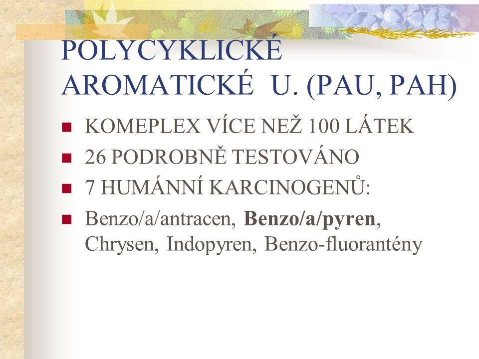 POLYCYKLICKÉ AROMATICKÉ U. (PAU, PAH) KOMEPLEX VÍCE NEŽ 100 LÁTEK 26 PODROBNĚ TESTOVÁNO 7 HUMÁNNÍ KARCINOGENŮ: Benzo/a/antracen, Benzo/a/pyren, Chryse