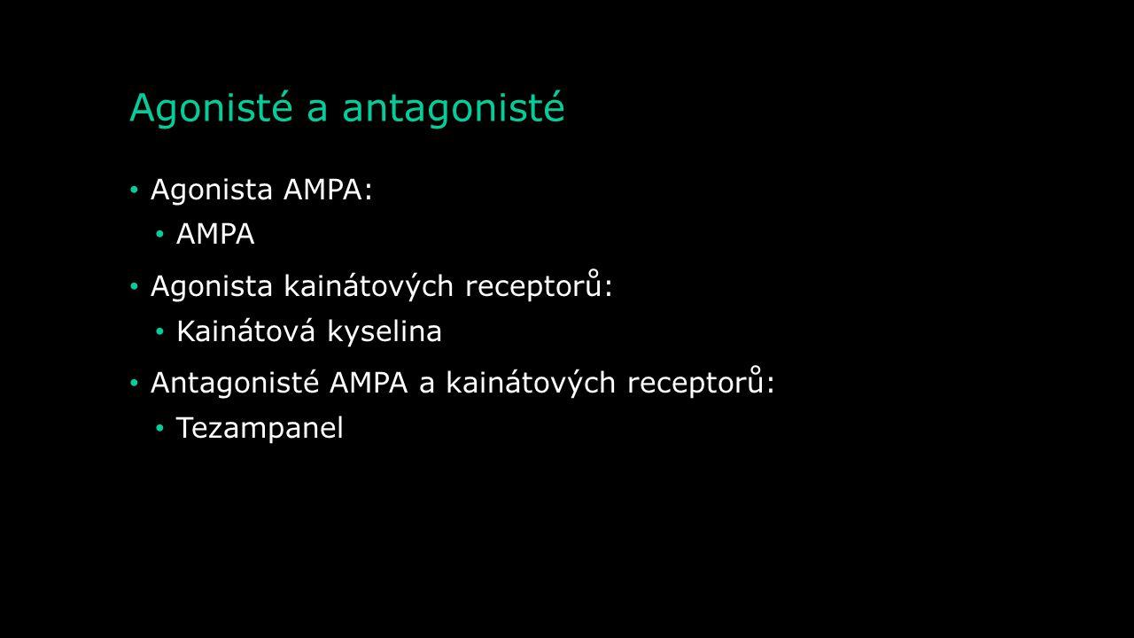 Agonisté a antagonisté Agonisté NMDA: Kyselina chinolinová Cykloserin NMDA Antagonisté NMDA: Ketamin Metadon Tramadol