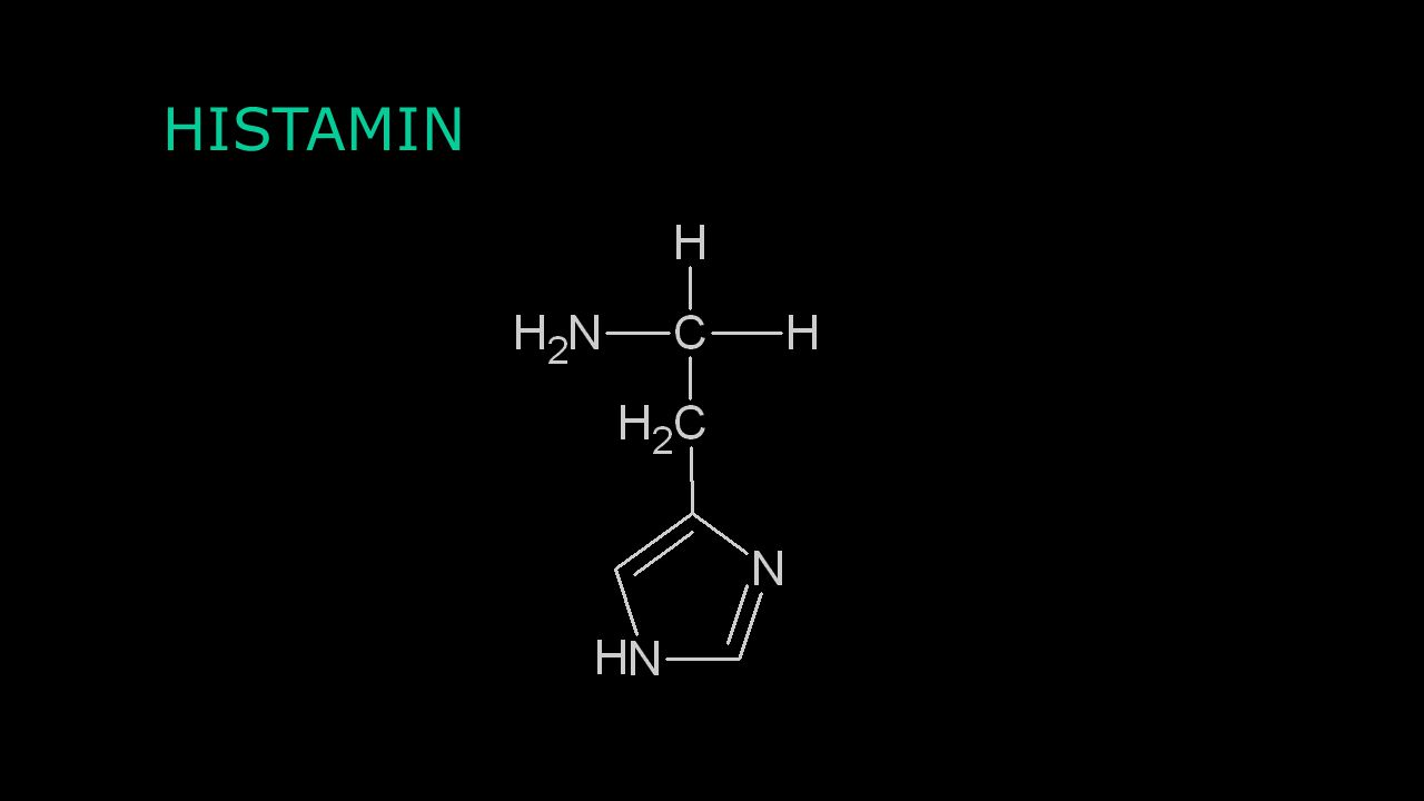 Agonisté a antagonisté Agonisté: Buspiron LSD 2-methyl-5-hydroxytryptamin Antagonisté: Trazodon Clozapin Risperidon Alosetron