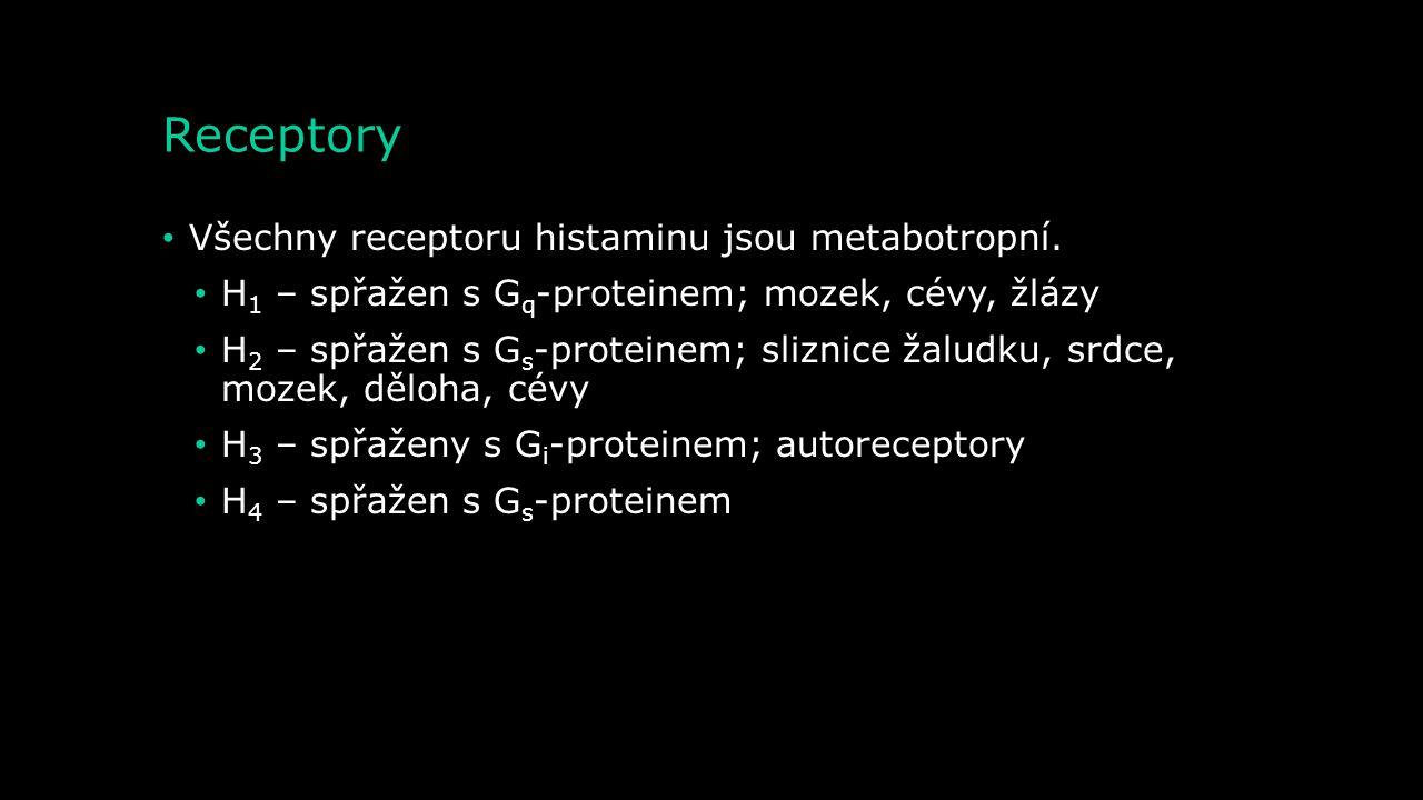 Metabolismus - degradace Diaminoxidáza (histamináza) Histamin Imidazolacetal dehyd Kyselina imidazoloctová Tele- methylhistamin Kyselinu tele- methyli
