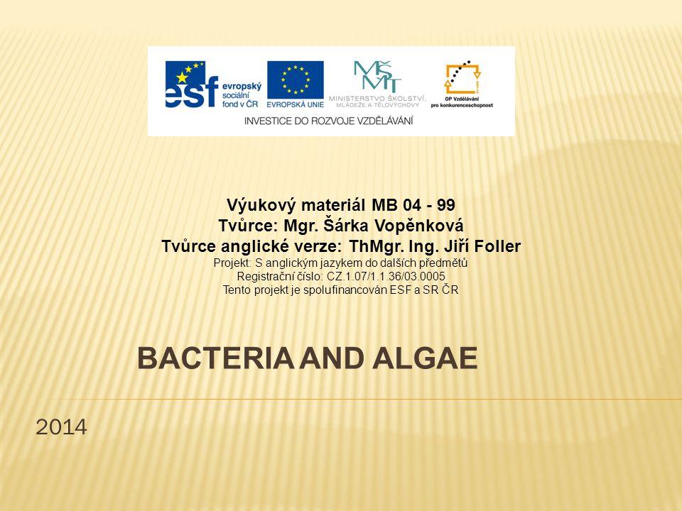 2014 BACTERIA AND ALGAE Výukový materiál MB 04 - 99 Tvůrce: Mgr.