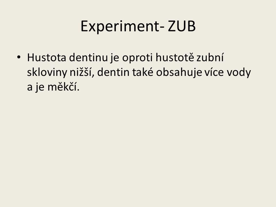 Experiment- ZUB Hustota dentinu je oproti hustotě zubní skloviny nižší, dentin také obsahuje více vody a je měkčí.