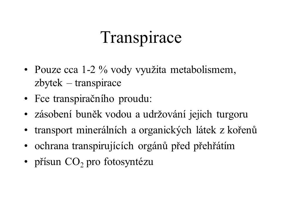 Transpirace Pouze cca 1-2 % vody využita metabolismem, zbytek – transpirace Fce transpiračního proudu: zásobení buněk vodou a udržování jejich turgoru