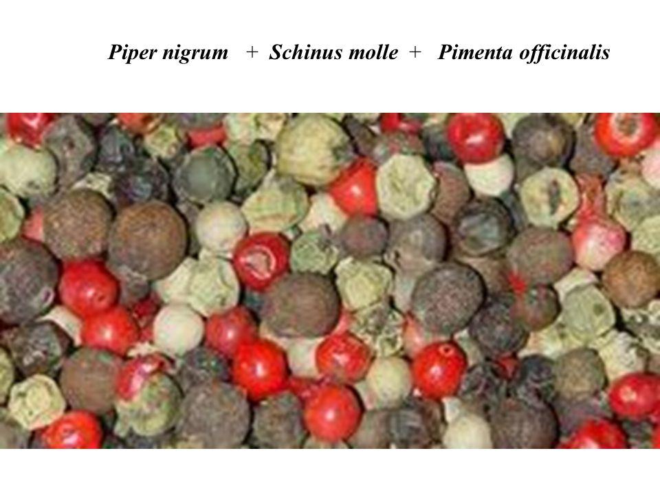 Piper nigrum + Schinus molle + Pimenta officinalis