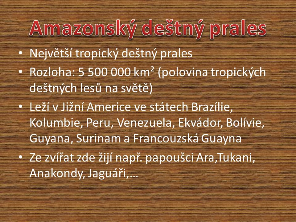 Největší tropický deštný prales Rozloha: 5 500 000 km² (polovina tropických deštných lesů na světě) Leží v Jižní Americe ve státech Brazílie, Kolumbie, Peru, Venezuela, Ekvádor, Bolívie, Guyana, Surinam a Francouzská Guayna Ze zvířat zde žijí např.