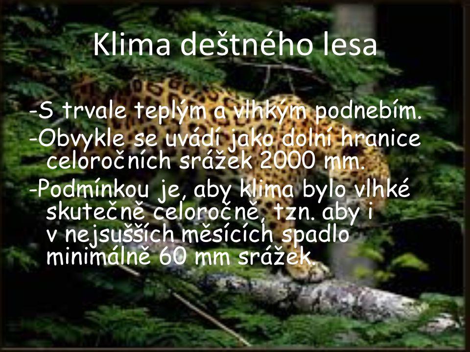Klima deštného lesa -S trvale teplým a vlhkým podnebím. -Obvykle se uvádí jako dolní hranice celoročních srážek 2000 mm. -Podmínkou je, aby klima bylo