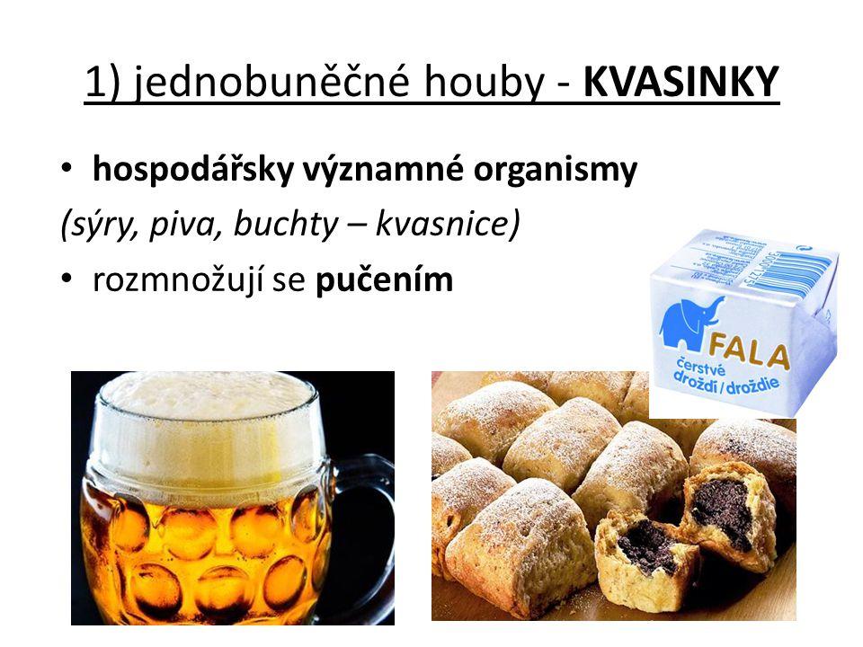 1) jednobuněčné houby - KVASINKY hospodářsky významné organismy (sýry, piva, buchty – kvasnice) rozmnožují se pučením