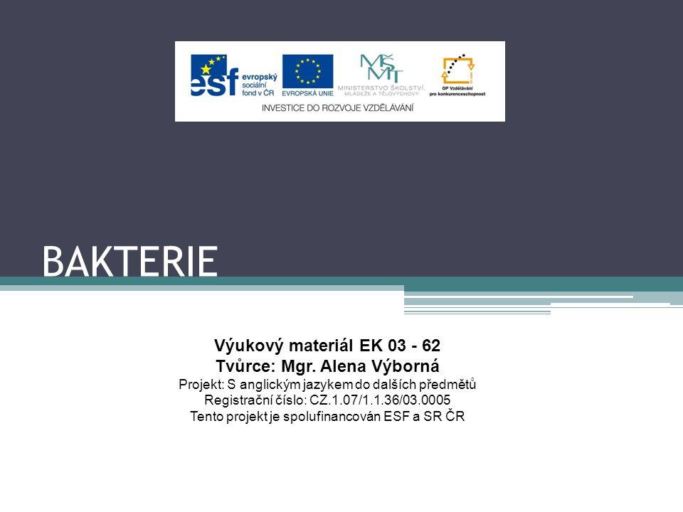 BAKTERIE Výukový materiál EK 03 - 62 Tvůrce: Mgr.