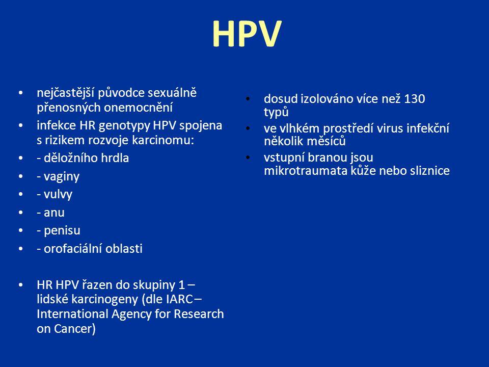 HPV nejčastější původce sexuálně přenosných onemocnění infekce HR genotypy HPV spojena s rizikem rozvoje karcinomu: - děložního hrdla - vaginy - vulvy