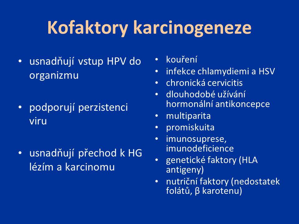 Kofaktory karcinogeneze kouření infekce chlamydiemi a HSV chronická cervicitis dlouhodobé užívání hormonální antikoncepce multiparita promiskuita imun