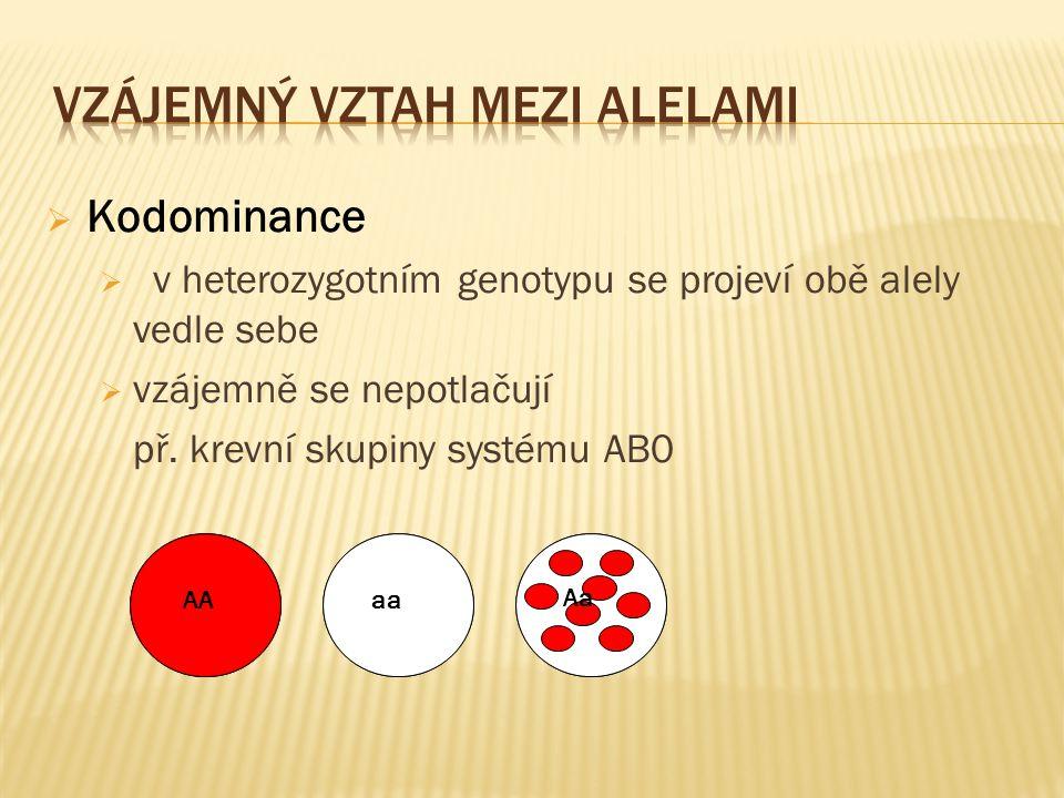  Kodominance  v heterozygotním genotypu se projeví obě alely vedle sebe  vzájemně se nepotlačují př. krevní skupiny systému AB0 AAaa Aa