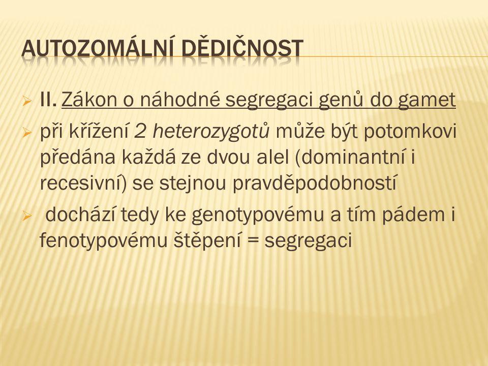  II. Zákon o náhodné segregaci genů do gamet  při křížení 2 heterozygotů může být potomkovi předána každá ze dvou alel (dominantní i recesivní) se s