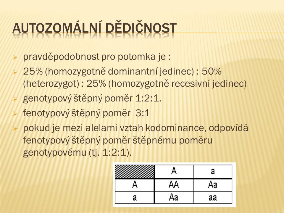  pravděpodobnost pro potomka je :  25% (homozygotně dominantní jedinec) : 50% (heterozygot) : 25% (homozygotně recesivní jedinec)  genotypový štěpn