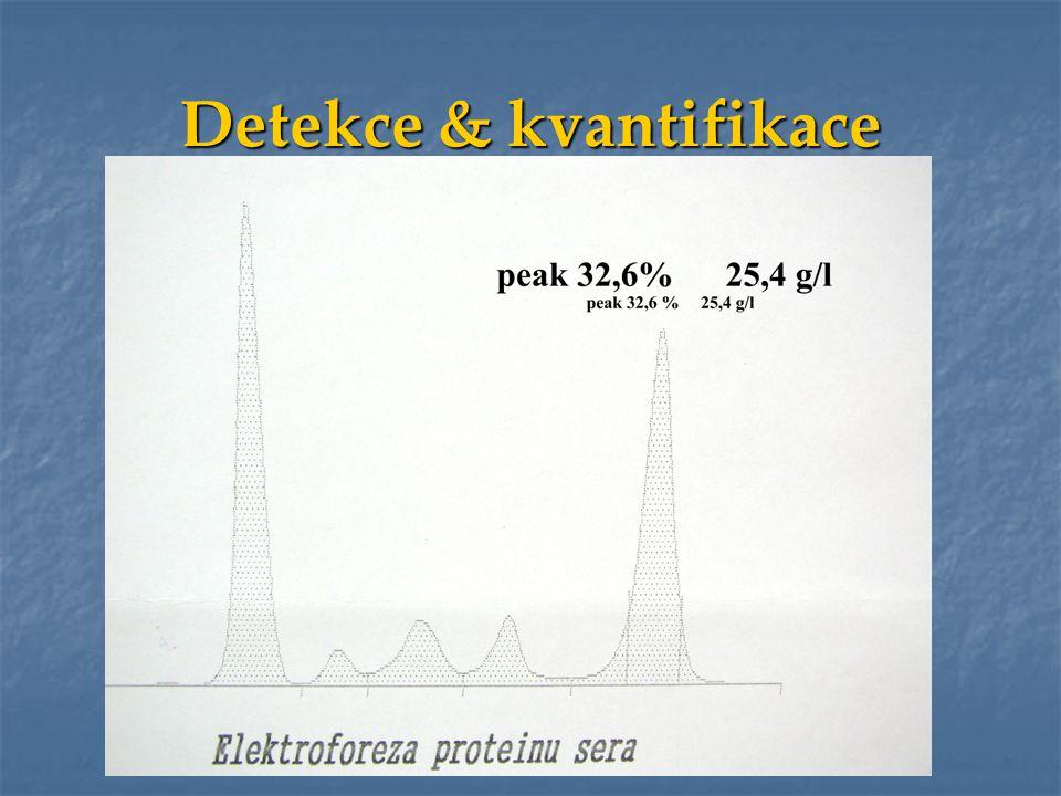 Současná situace -2010 Současná situace -2010 Velcade Velcade Thalidomid Thalidomid Lenalidomid Lenalidomid 2009 Alkylační látky Alkylační látky Kortikosteroidy Kortikosteroidy Antracykliny Antracykliny HDT+ASCT HDT+ASCTAllo-RIC Experimental.