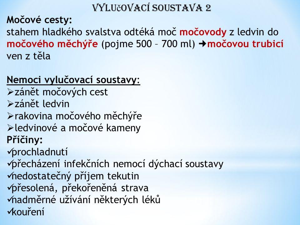 Vylu č ovací soustava 2 Močové cesty: stahem hladkého svalstva odtéká moč močovody z ledvin do močového měchýře (pojme 500 – 700 ml) močovou trubicí ven z těla Nemoci vylučovací soustavy:  zánět močových cest  zánět ledvin  rakovina močového měchýře  ledvinové a močové kameny Příčiny: prochladnutí přecházení infekčních nemocí dýchací soustavy nedostatečný příjem tekutin přesolená, překořeněná strava nadměrné užívání některých léků kouření