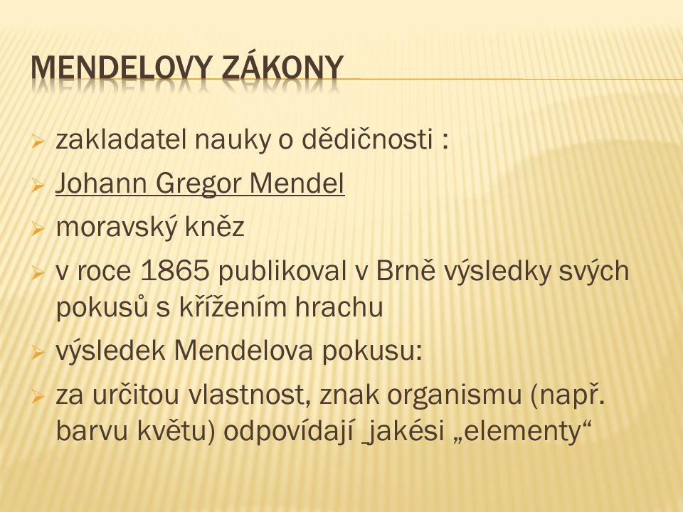  zakladatel nauky o dědičnosti :  Johann Gregor Mendel  moravský kněz  v roce 1865 publikoval v Brně výsledky svých pokusů s křížením hrachu  výs