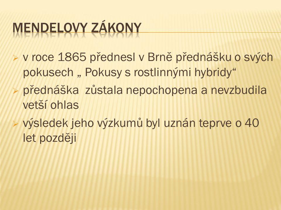 """ v roce 1865 přednesl v Brně přednášku o svých pokusech """" Pokusy s rostlinnými hybridy""""  přednáška zůstala nepochopena a nevzbudila vetší ohlas  vý"""