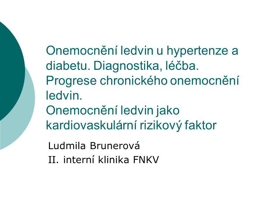  Diabetická nefropatie  Onemocnění ledvin u hypertenze  Progrese chronické renální insuficience  Onemocnění ledvin jako kardiovaskulární rizikový faktor