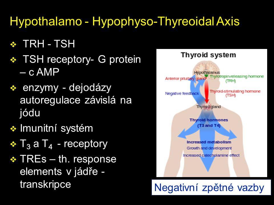 Hypothalamo - Hypophyso-Thyreoidal Axis  TRH - TSH  TSH receptory- G protein – c AMP  enzymy - dejodázy autoregulace závislá na jódu  Imunitní sys