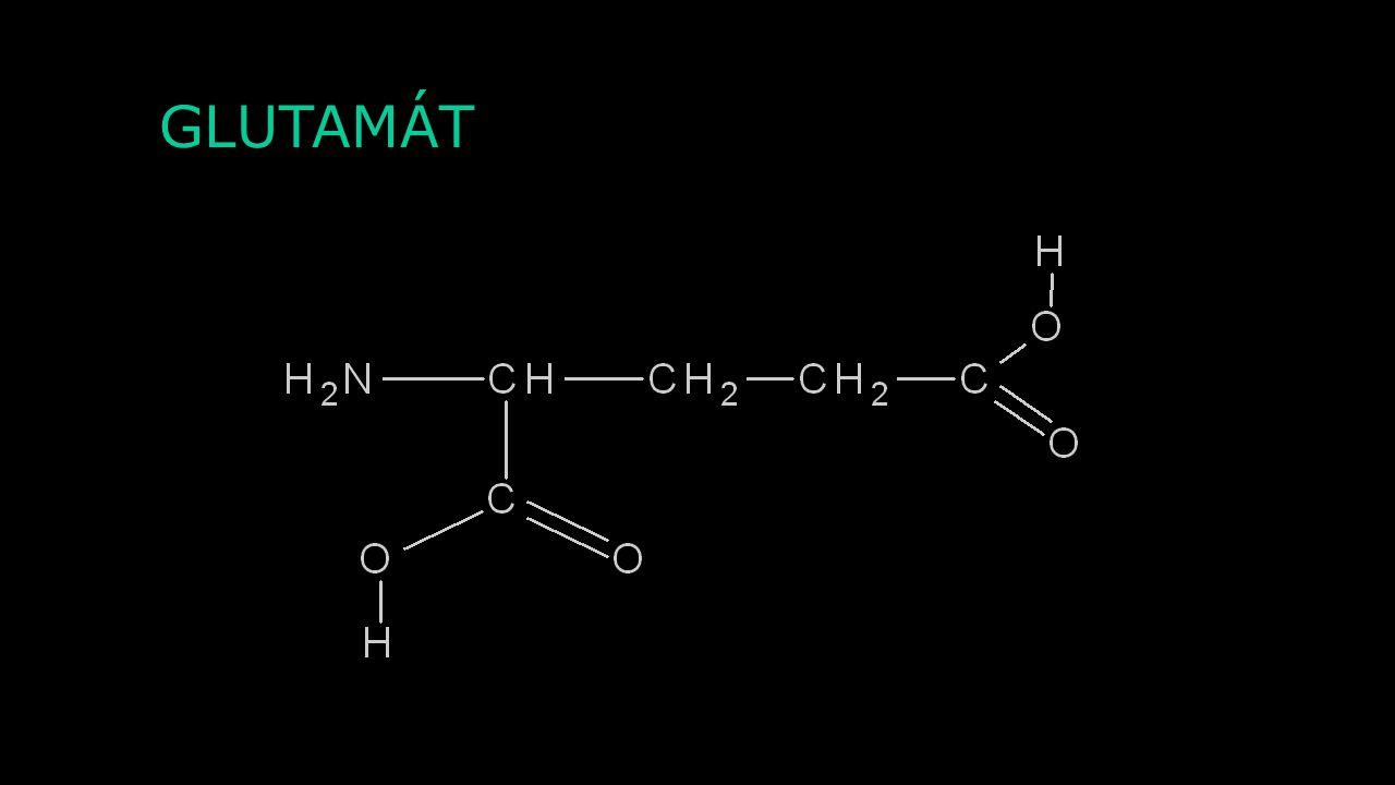 ROZDĚLENÍ NEUROTRANSMITERŮ SKUPINA CHEMICKÝCH LÁTEKPŘÍKLAD MALOMOLEKULOVÉ NEUROTRANSMITERY Acetylcholin AminokyselinyGABA, glycin, glutamát, aspartát