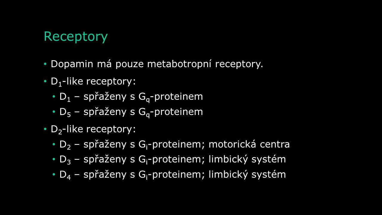 Metabolismus – degradace dopaminu Dopamin MAO 3,4-dihydrogen fenylacetaldehyd Kyselina 3,4- dihydroxyfenyloctová 3-Methoxytyramin Kyselina homovanilov