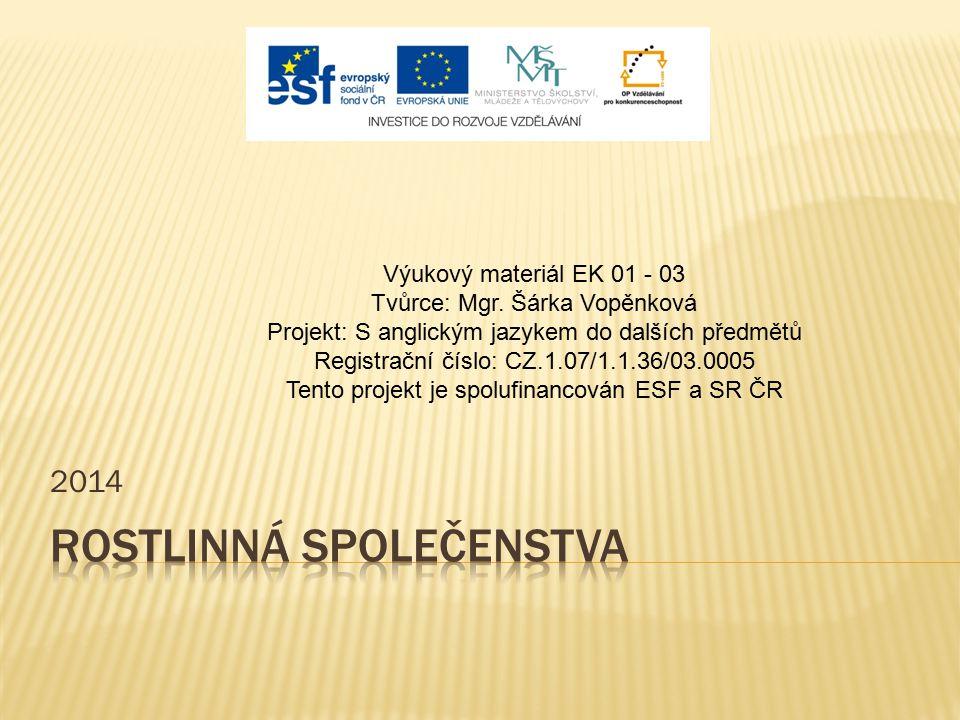 2014 Výukový materiál EK 01 - 03 Tvůrce: Mgr. Šárka Vopěnková Projekt: S anglickým jazykem do dalších předmětů Registrační číslo: CZ.1.07/1.1.36/03.00