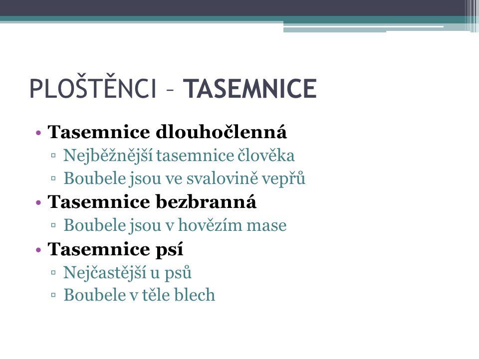 PLOŠTĚNCI – TASEMNICE Tasemnice dlouhočlenná ▫Nejběžnější tasemnice člověka ▫Boubele jsou ve svalovině vepřů Tasemnice bezbranná ▫Boubele jsou v hověz
