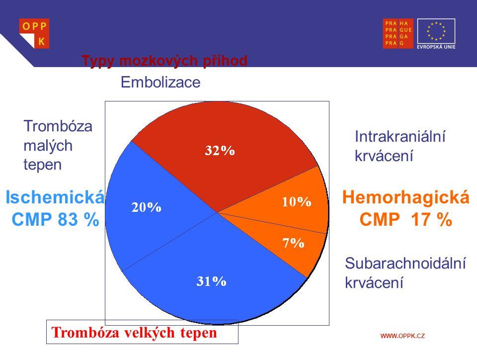 WWW.OPPK.CZ Typy mozkových příhod Intrakraniální krvácení Subarachnoidální krvácení Trombóza velkých tepen Trombóza malých tepen Embolizace Ischemická