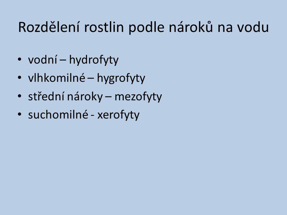 Rozdělení rostlin podle nároků na vodu vodní – hydrofyty vlhkomilné – hygrofyty střední nároky – mezofyty suchomilné - xerofyty