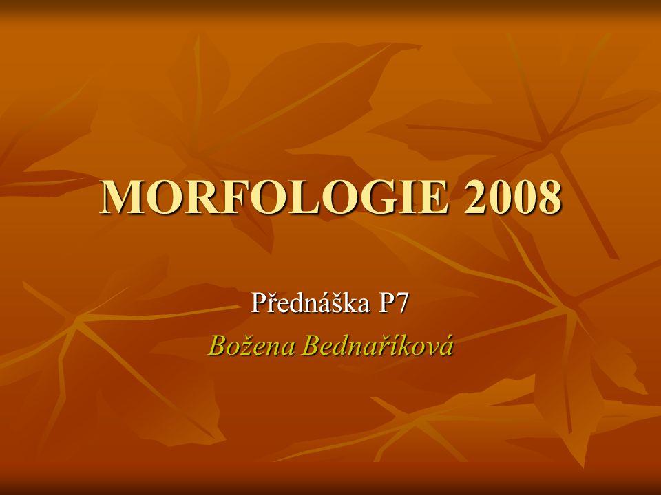 MORFOLOGIE 2008 Přednáška P7 Božena Bednaříková