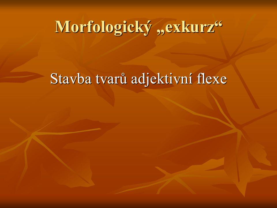 Obsah 1) shody s flexí substantivní, nebo slovesnou .