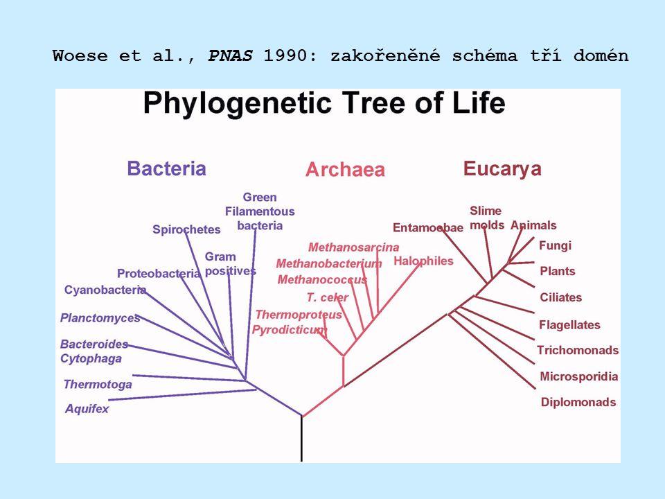 Woese et al., PNAS 1990: zakořeněné schéma tří domén