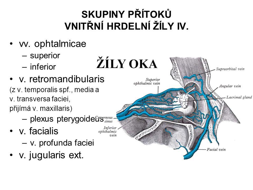 SKUPINY PŘÍTOKŮ VNITŘNÍ HRDELNÍ ŽÍLY IV.vv. ophtalmicae –superior –inferior v.
