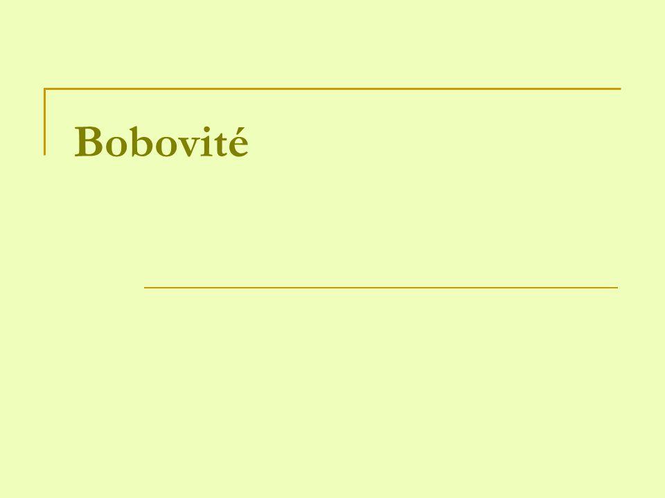 Bobovité