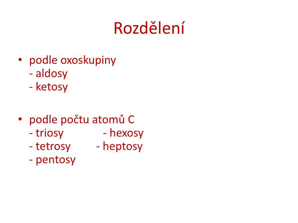 Rozdělení podle oxoskupiny - aldosy - ketosy podle počtu atomů C - triosy - hexosy - tetrosy - heptosy - pentosy