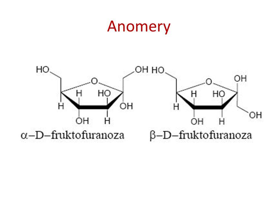 Anomery