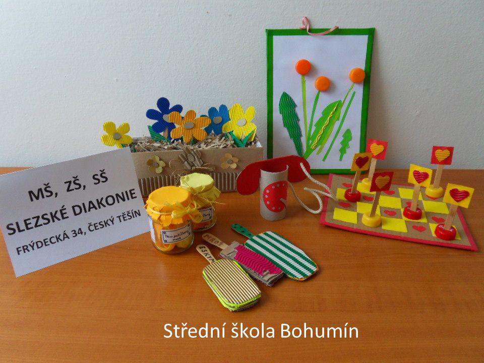 Střední škola Bohumín