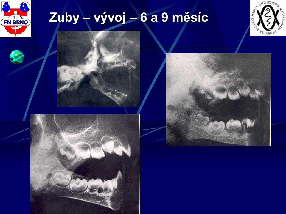 Zuby – vývoj – 6 a 9 měsíc